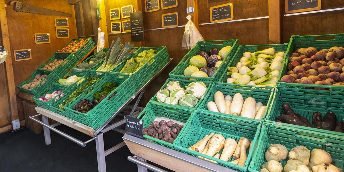 bel assortimment de légumes de saison