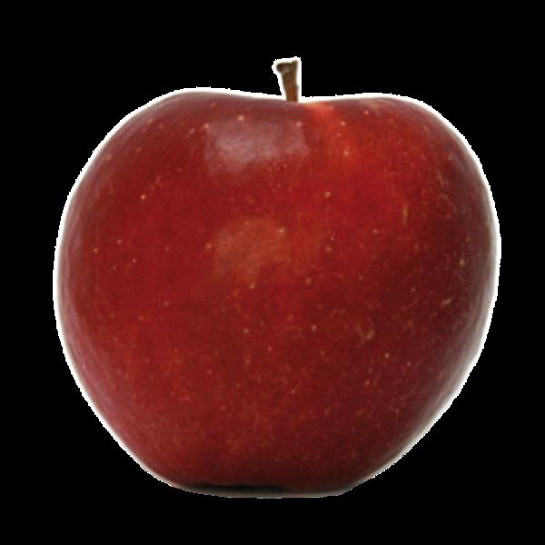 Dalinette, délicieuse variété de fin de saison… la connaissez-vous ?